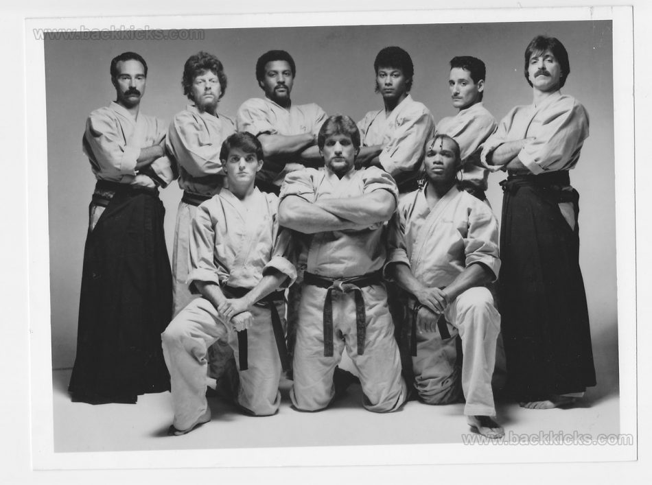Miami Vice Karate
